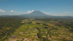 Mountain landscape farmlands and village Bali, Indonesia Footage