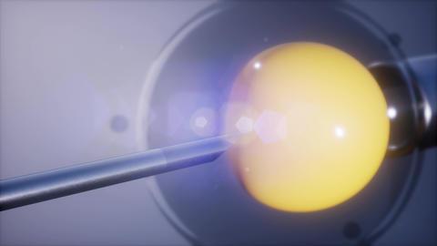 artificial insemination microscopy engineering Footage