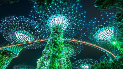 Singapore Light Show in Gardens by the Bay. Seampess Loop ビデオ