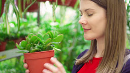 Young woman in florist's shop holding green tree in pot. Female customer picking Footage