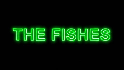 Neon flickering green constellation of a THE FISHES in the haze. Alpha channel Animation