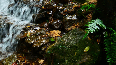 Panning shot Waterfalls in the jungles of Thailand in rainy season The flowing Footage