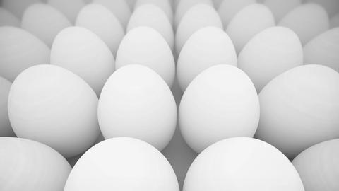 White Eggs Row stock footage