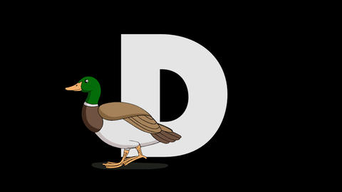 Letter D and Duck (foreground) Animation