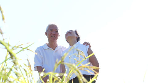 Cool Asian senior couple wearing sunglasses hugging in front of rice field. Travel in morning sun Footage