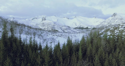 Epic view of mountains and pines in a winter landscape in Norway Footage