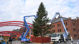 Exterior view of Yokohama Red Brick Warehouse and the christmas decoration Footage