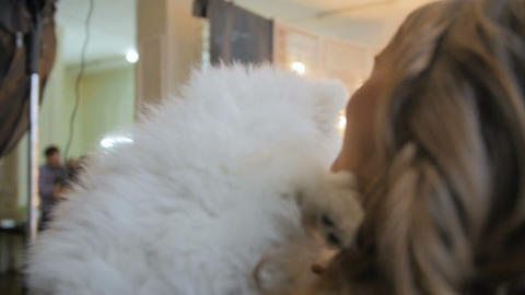 Pretty girl playing with samoyed puppy dog indoors Stock Video Footage
