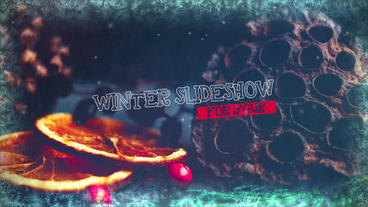 Winter Slideshow Premiere Pro Template