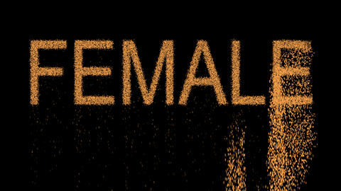 text FEMALE appears from the sand, then crumbles. Alpha channel Premultiplied - Animation