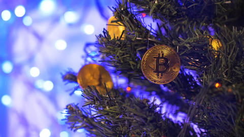 Christmas Tree Branch with Bitcoins against Blue Lights Closeup Live Action