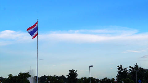Thailand flag wave with tree and cloud sky background Footage