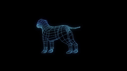 Dog Nice Hologram Animation 30FPS Animation