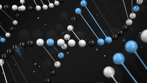 Gloss model of black, white and blue DNA strand on black background Animation