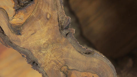 Close-up, the rotation of a beautiful walnut texture. Cracks, emptiness, bark Footage