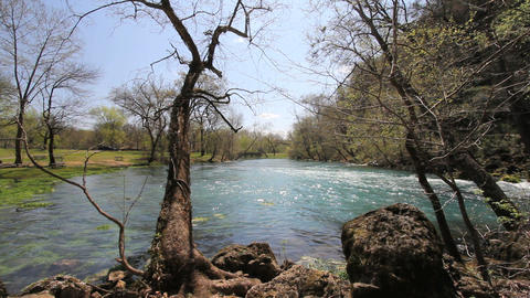 Missouri current river through trees at big spring Stock Video Footage