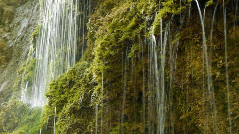 Natural water fresh spring waterfall green nature Footage