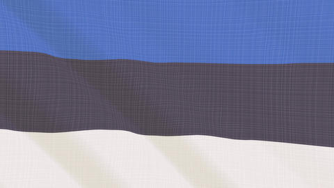 Flags Europa Full 4K Textile 0