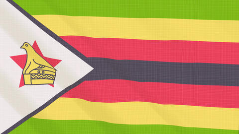 zimbabwe flag waving in the wind. Icon in the frame. Animation loop Bild