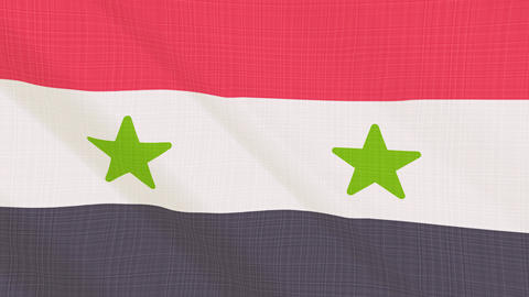syria flag waving in the wind. Icon in the frame. Animation loop 画像