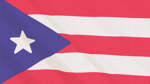 Puerto Rico flag waving in the wind. Icon in the frame. Animation loop Bild