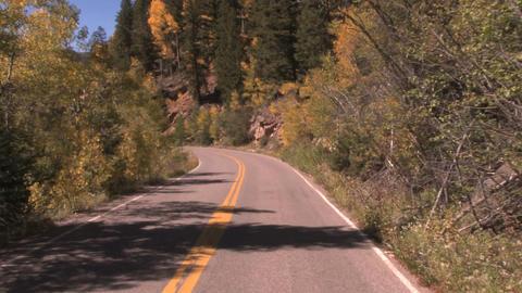 Time lapse road rush through aspen road in autumn Footage