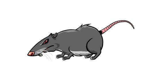 Still Rat Animation