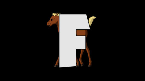 Letter F and Foal (background) Animation