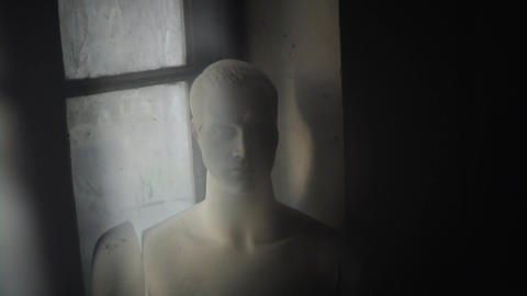 Old Male Mannequin stock footage