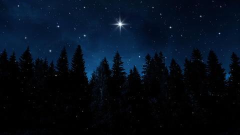 Winter Night Background CG動画素材