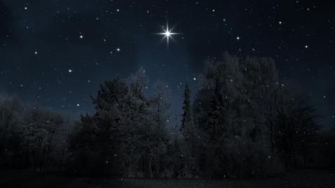 Winter Night Background 애니메이션