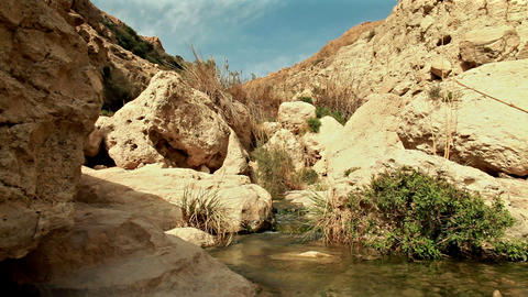 Stream and pool at top of ein gedi Footage