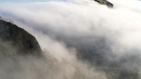 HD Mashuu-ko sea of clouds ライブ動画