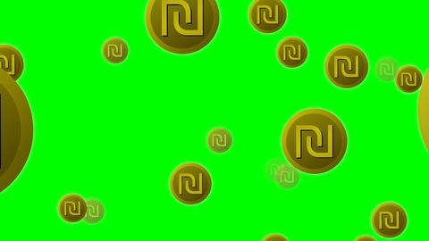 Israeli currency shekel symbol icons flying on green screen, 4k video Animation
