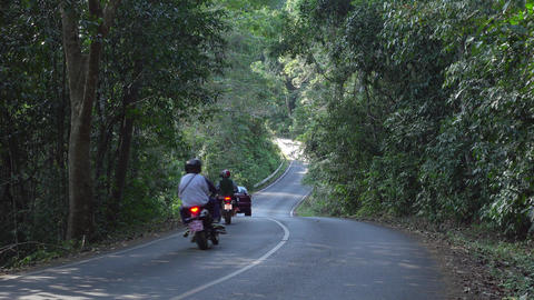 People travel in Inside The Khao Yai National Park Live Action