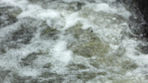 slow motion video of a mountain river in in the jungle Footage