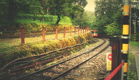 台灣阿里山小火車鐵道 Taiwan Alishan train & railroad crossing Fotografía