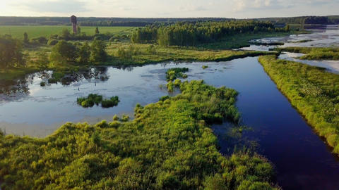 Very smooth flight over a wetland pond, From Dron Footage
