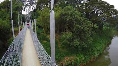 Bridge over Mahaweli River. inside Royal Botanical Gardens in Peradeniya Footage