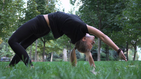 The young beautiful girl engaged in yoga フォト