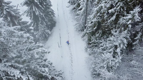 Flight over snowstorm in a snowy mountain coniferous forest and girl who Footage