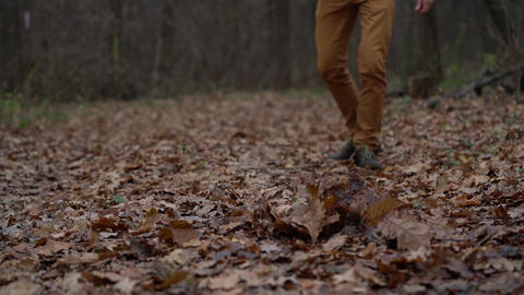 Legs of a man who walks through the autumn forest and kicks the fallen leaves Footage