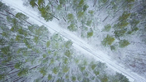 Aerial view on road in the winter snow fores. Scenic winter landscape Footage