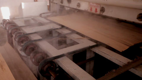 Furniture factory. Production of plywood Live Action