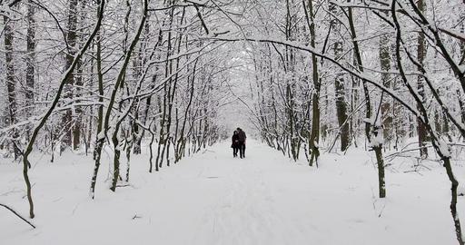 Happy Couple Walking in Winter Park Archivo