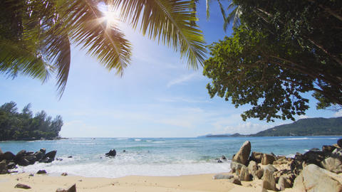 Sunshine Peeking through Palm Fronds over Thai Tropical Beach Footage