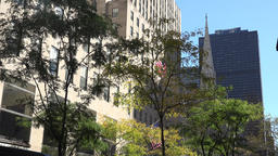 USA New York City Manhattan fifth Avenue with trees and St. Patrick's Cathedral Footage