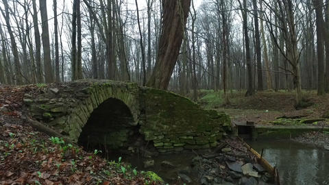 Old Stone Bridge in the Forest Live Action