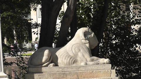 Old Sculpture The Łazienki Królewskie Palace stock footage