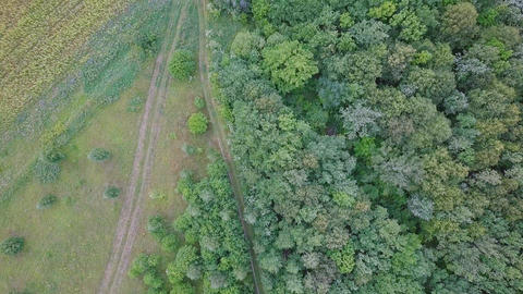 Span over the forest and fields. Panoramic view. Russia, From Dron, Unveiling Footage